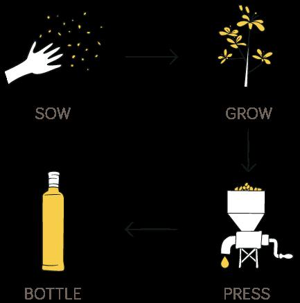 Sow, Grow, Press, Bottle