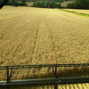 #farm24 combine view
